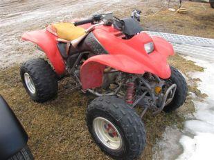 2001 Honda TRX 250 EX Quad